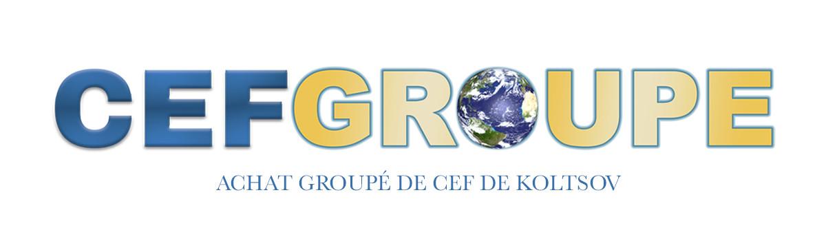 Achat groupé de CEF de Koltsov – Correcteur d'État Fonctionnel
